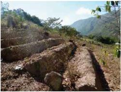 Equipo Nizkor Unodc Bolivia Monitoreo De Cultivos De