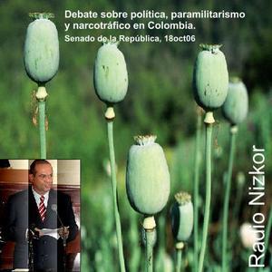 Paramilitarismo y Politica